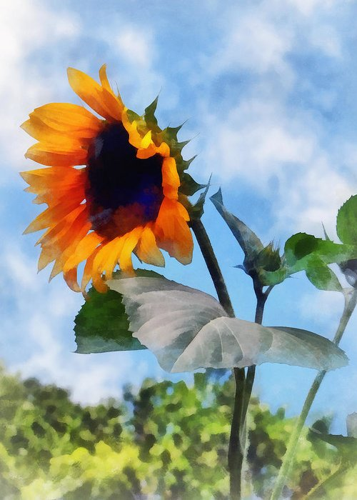 Sunflower Greeting Card featuring the photograph Sunflower Against The Sky by Susan Savad