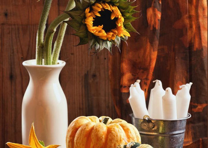 Pumpkin Greeting Card featuring the photograph Sunflower And Gourds Still Life by Amanda Elwell