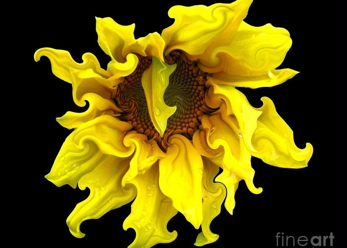 Sunflowers Greeting Card featuring the photograph Sunflower With Curlicues Effect by Rose Santuci-Sofranko
