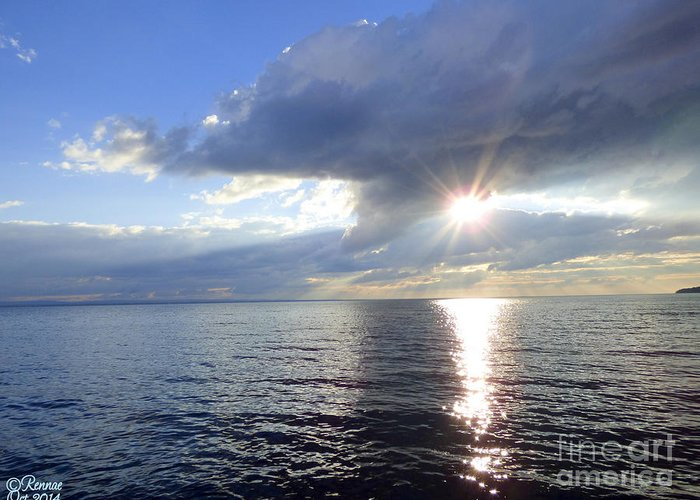 Lake Greeting Card featuring the photograph Sunlight Reflections by Rennae Christman