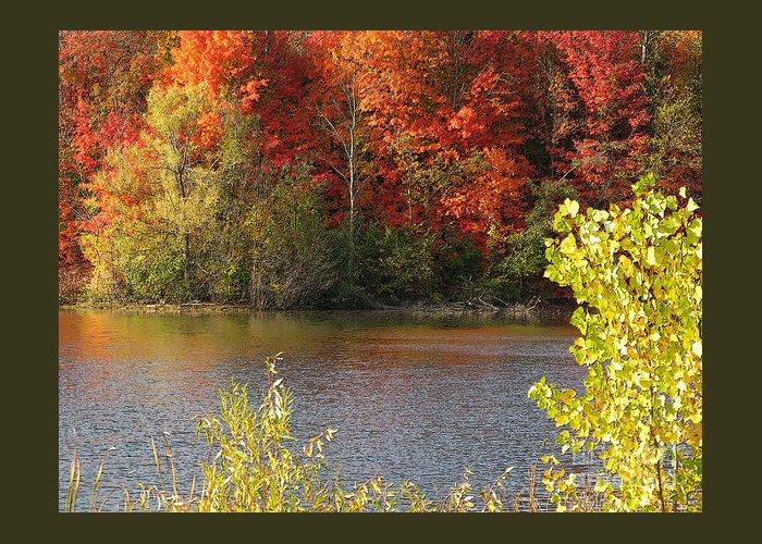 Autumn Greeting Card featuring the photograph Sunlit Autumn by Ann Horn