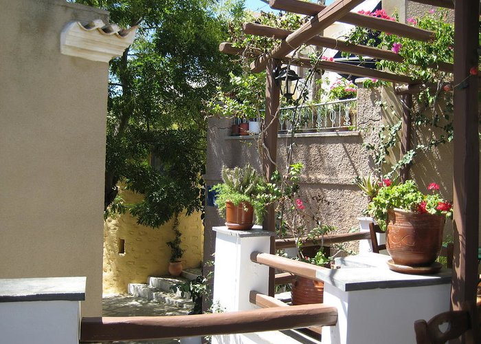 Patio Greeting Card featuring the photograph Sunny Patio by Panos Spiliadis