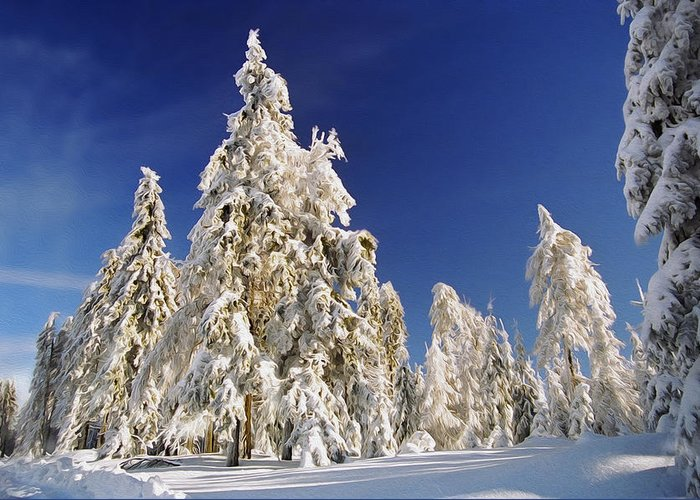 Sunny Greeting Card featuring the photograph Sunny Winter Day by Aged Pixel