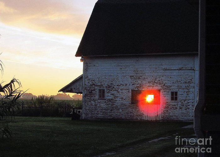 Sunrise Greeting Card featuring the photograph Sunrise 365 18 by Tina M Wenger