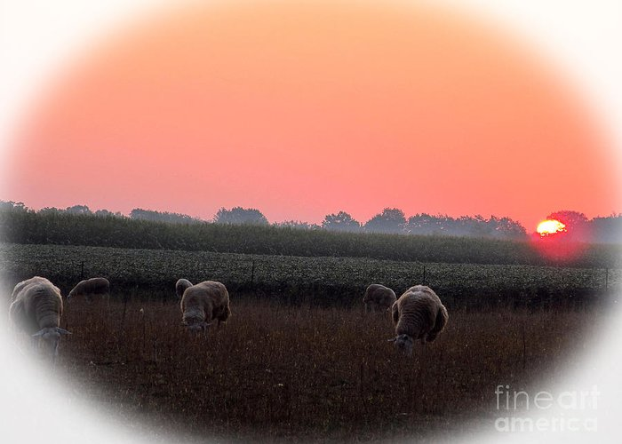 Sunrise Greeting Card featuring the photograph Sunrise 365 8 by Tina M Wenger