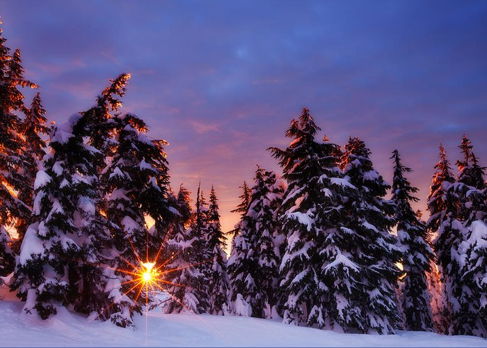 Winter Greeting Card featuring the photograph Sunrise Dreams by Darren White