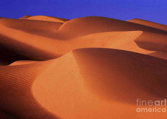Sand Greeting Card featuring the photograph Sunrise Dunes 312 by Paul W Faust - Impressions of Light