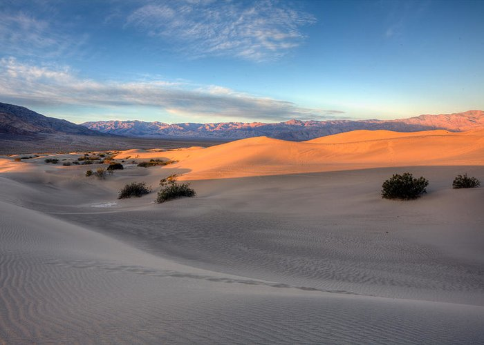 Mesquite Flats Duunes Greeting Card featuring the photograph Sunrise Dunes by Peter Tellone
