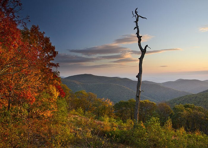 Shenandoah Greeting Card featuring the photograph Sunrise In Shenandoah National Park by Pierre Leclerc Photography