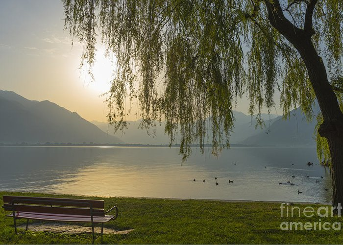 Lake Greeting Card featuring the photograph Sunrise by Mats Silvan