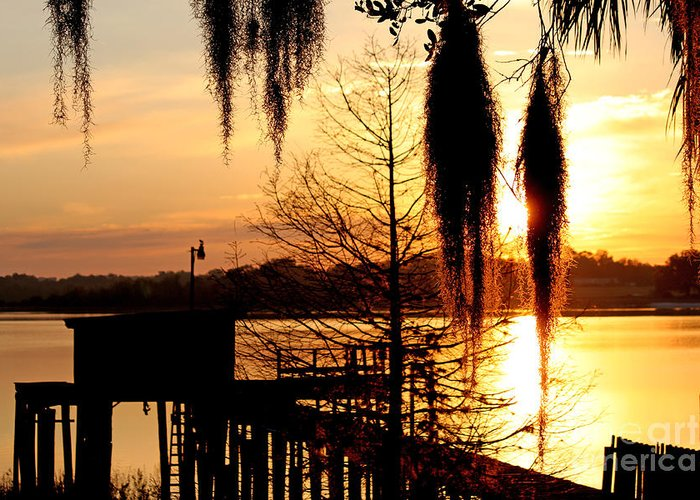 Sunrise Greeting Card featuring the photograph Sunrise On Lake Weir - 7 by Tom Doud