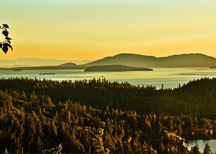 Sunrise Greeting Card featuring the photograph Sunrise Over Bellingham Bay by Robert Bales