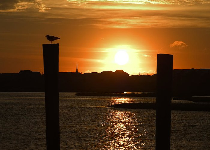 Sunrise Greeting Card featuring the photograph Sunrise Over Topsail Island by Mike McGlothlen