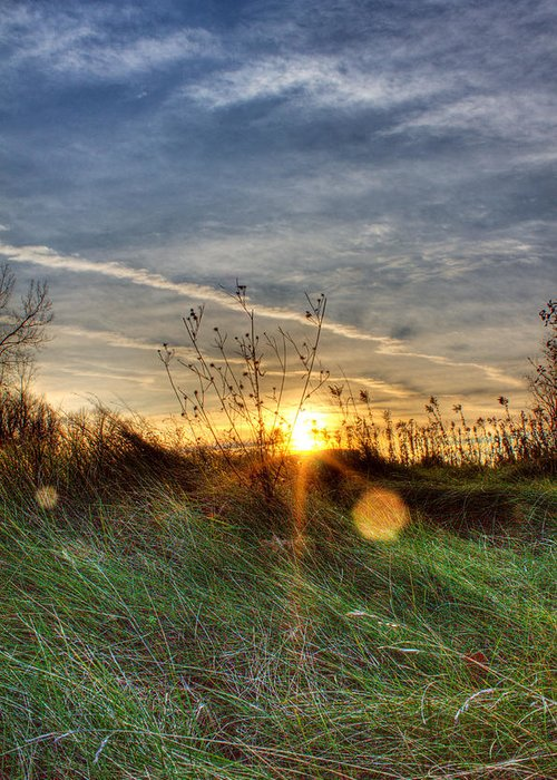 Sunrise Greeting Card featuring the photograph Sunrise Through Grass by Tim Buisman