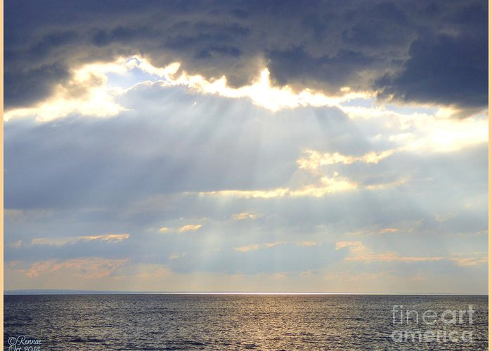 Nature Greeting Card featuring the photograph Suns Rays by Rennae Christman