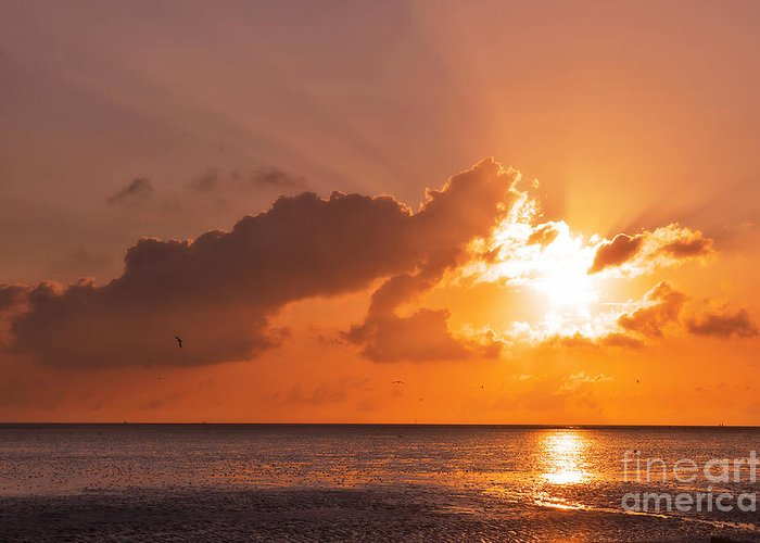 North Sea Greeting Card featuring the photograph Sunset by Angela Doelling AD DESIGN Photo and PhotoArt