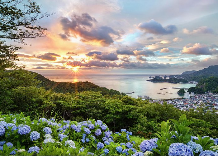 Tranquil Scene Greeting Card featuring the photograph Sunset At Hydrangea Hills by Tommy Tsutsui