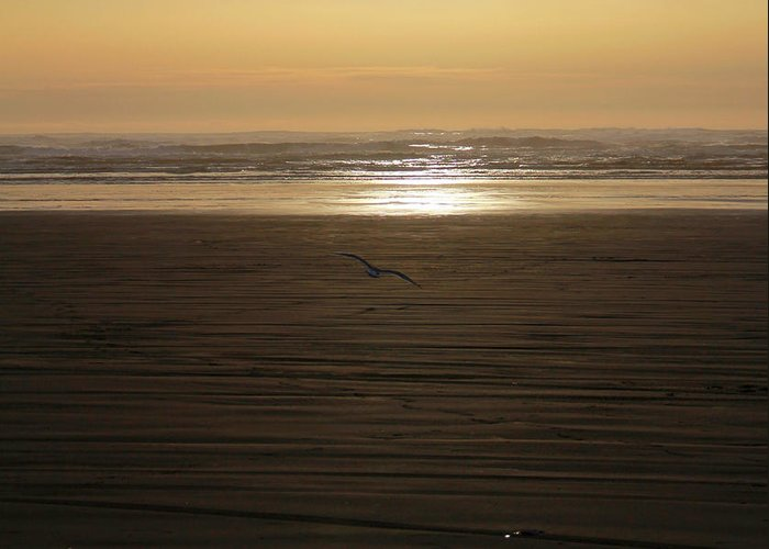 Ocean Greeting Card featuring the photograph Sunset At Ocean Shores II by Jeanette C Landstrom