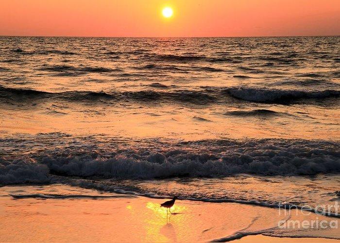 St Joseph Peninsula State Park Greeting Card featuring the photograph Sunset At St. Joseph by Adam Jewell
