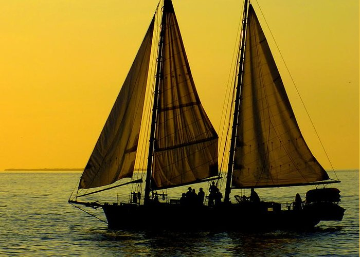 Key West Greeting Card featuring the photograph Sunset Celebration by Karen Wiles