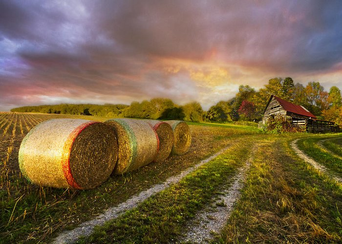 Appalachia Greeting Card featuring the photograph Sunset Farm by Debra and Dave Vanderlaan