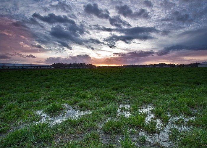 Swamp Greeting Card featuring the photograph Sunset In The Swamp by Eti Reid