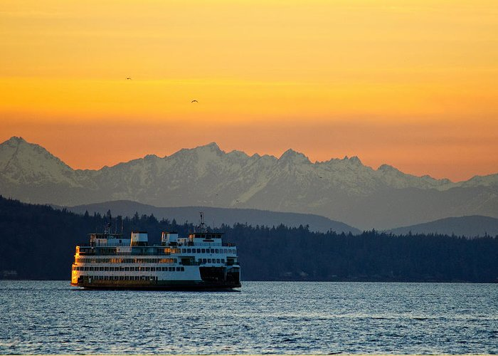 Sunset Greeting Card featuring the photograph Sunset Over Olympic Mountains by Dan Mihai