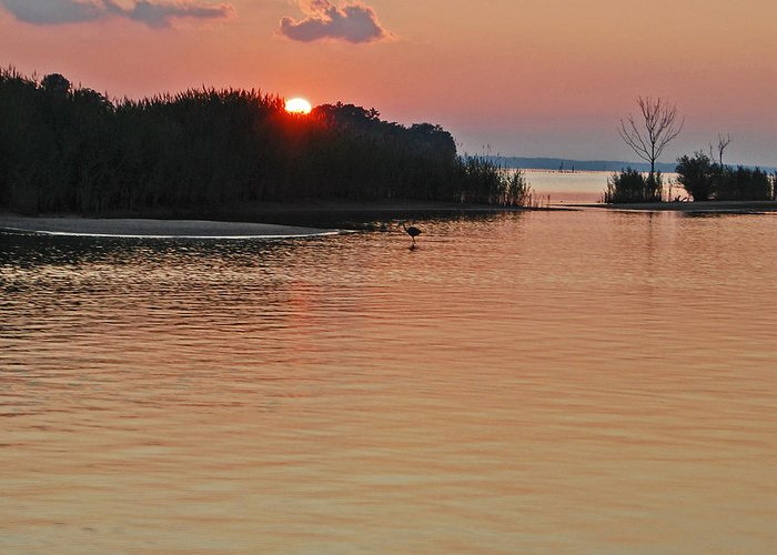 Landscape Greeting Card featuring the photograph Sunset Over The Bay by Debra Rahl