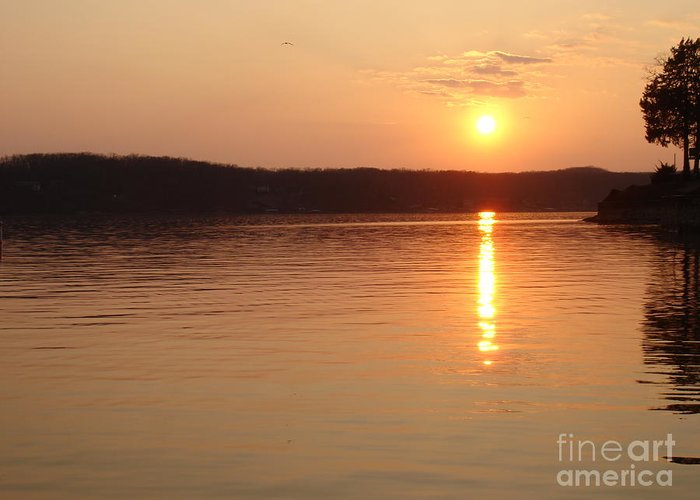 Landscape Greeting Card featuring the photograph Sunset Over The Lake by Aimee Vance