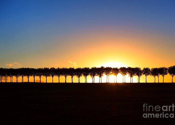 France Greeting Card featuring the photograph Sunset Over Tree Lined Road by Olivier Le Queinec