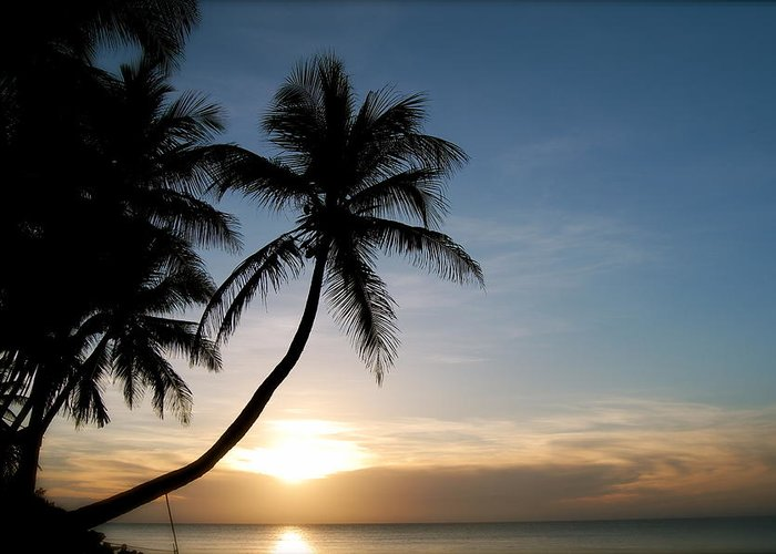 Sunset Greeting Card featuring the photograph Sunset Rincon by Wanda Leon