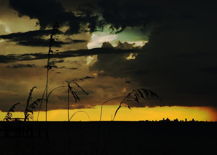 Sunset Greeting Card featuring the photograph Sunset Silhouette by Norman Johnson