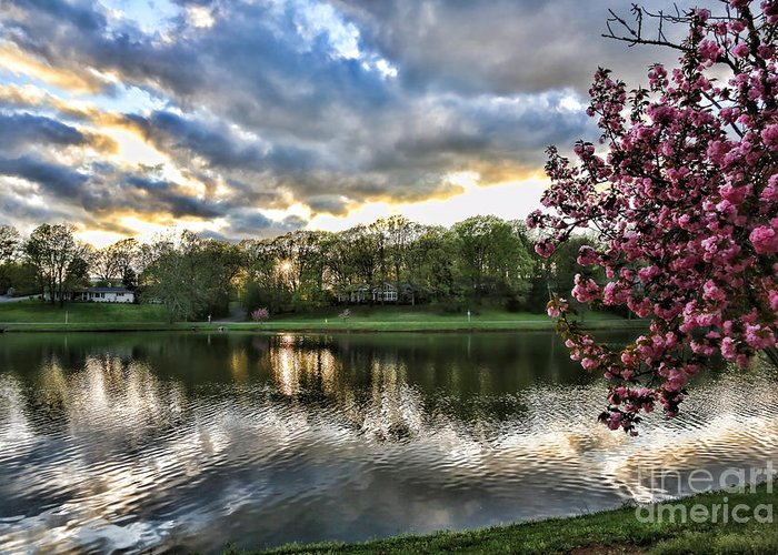 Tennessee Greeting Card featuring the photograph Sunset Southern by Chuck Kuhn