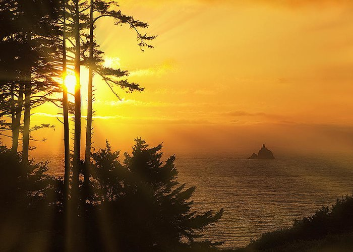 Lighthouse Greeting Card featuring the photograph Sunset Thru The Trees by Andrew Soundarajan