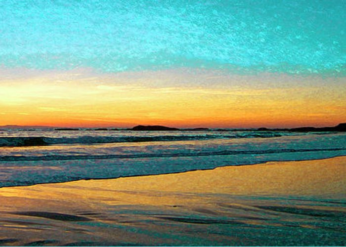 Beach Greeting Card featuring the photograph Sunset With Birds by Ben and Raisa Gertsberg