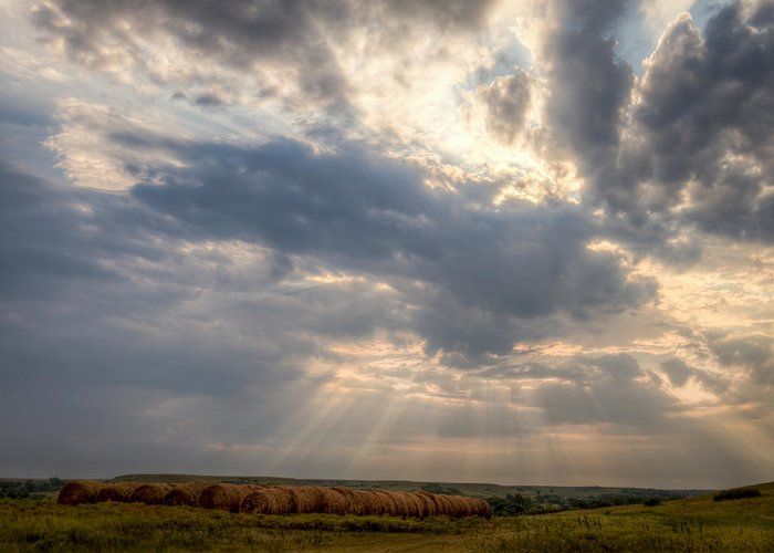 Fine Art America Greeting Card featuring the photograph Sunshine And Hay Bales by Scott Bean