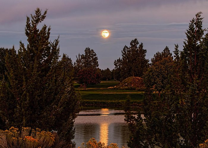 Eagle Crest Greeting Card featuring the photograph Super Moon by Leon Roland