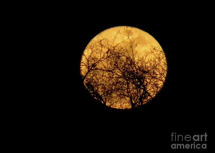 Super Moon Greeting Card featuring the photograph Supermoon 2 by Laura Yamada