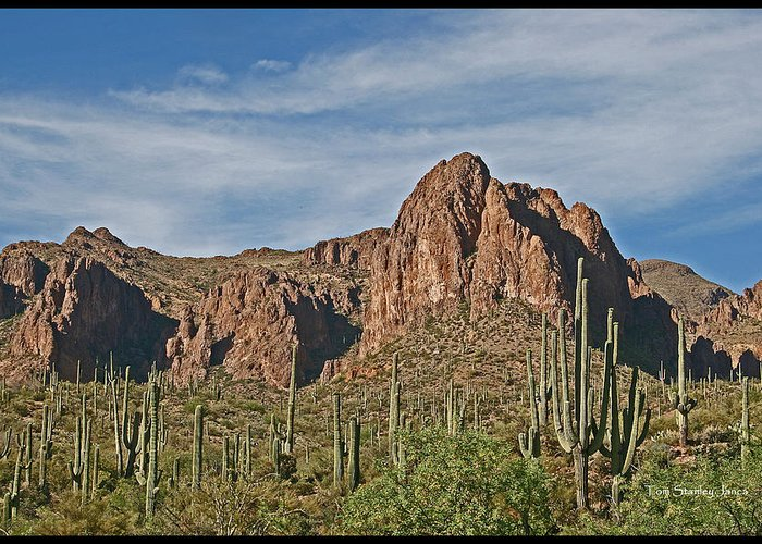 Superstition Mountains Greeting Card featuring the photograph Superstition Mountains by Tom Janca