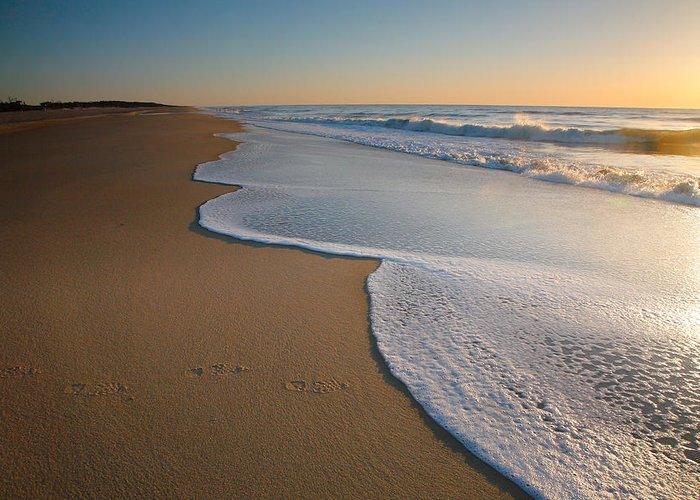Beach Greeting Card featuring the photograph Surf And Sand by Steven Ainsworth