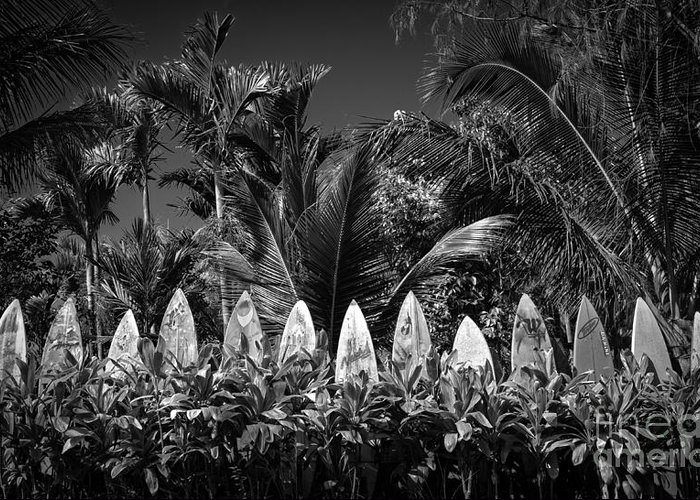 Hawaii Greeting Card featuring the photograph Surf Board Fence Maui Hawaii Black And White by Edward Fielding