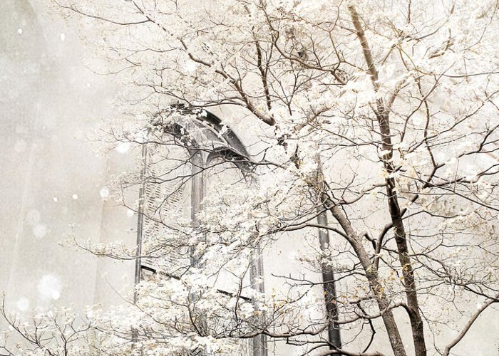 Nature Photography Greeting Card featuring the photograph Surreal Dreamy Winter White Church Trees by Kathy Fornal