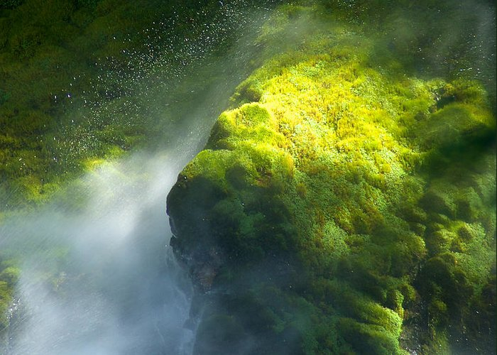 Abstract Greeting Card featuring the photograph Surrounded By Mist by Mary Lee Dereske