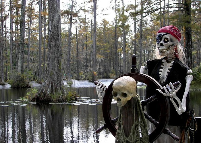 Pirates Greeting Card featuring the photograph Swamp Pirate by Karen Wiles