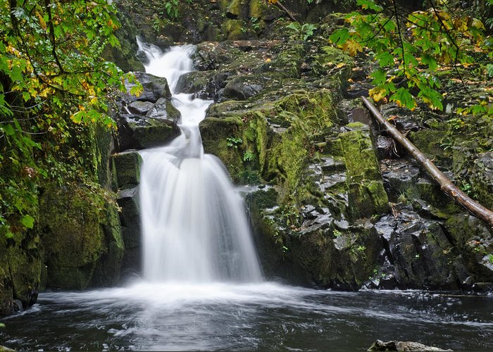 Waterfall Greeting Card featuring the photograph Sweet Creek Falls by Margaret Pitcher