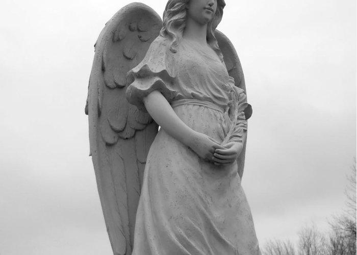 Angel Greeting Card featuring the photograph Sweet Seraphim by Rachel E Moniz