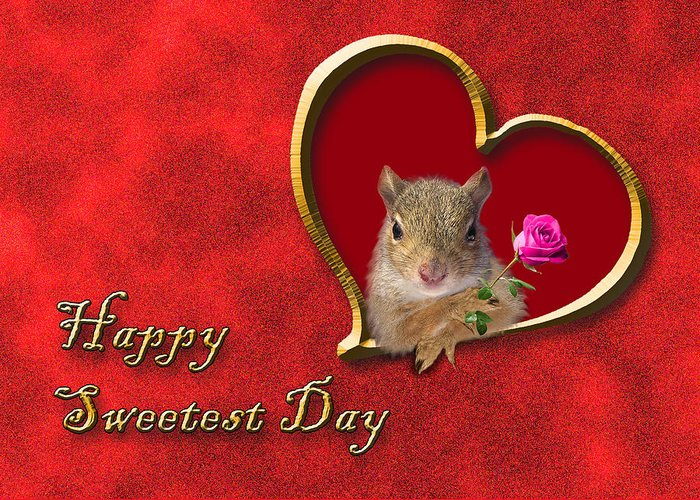 Sweetest Day Greeting Card featuring the photograph Sweetest Day Squirrel by Jeanette K