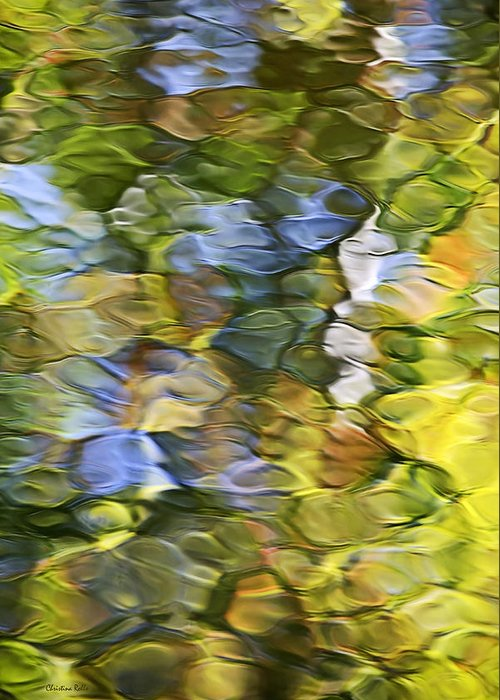 Mosaic Greeting Card featuring the photograph Sycamore Mosaic by Christina Rollo