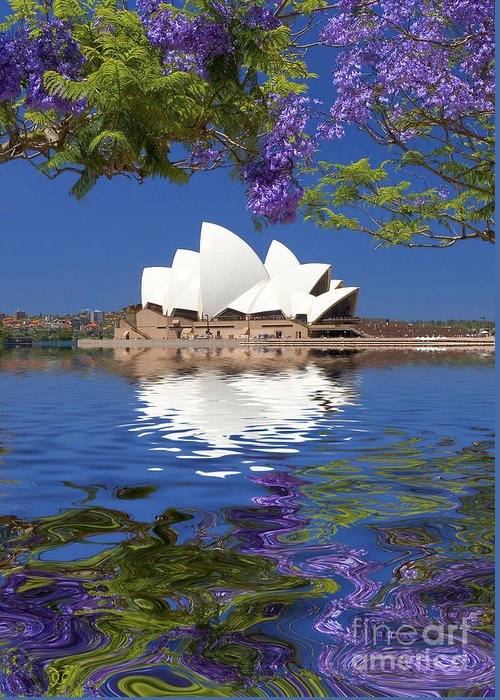 Sydney Opera House Greeting Card featuring the photograph Sydney Opera House with jacaranda reflection by Sheila Smart Fine Art Photography