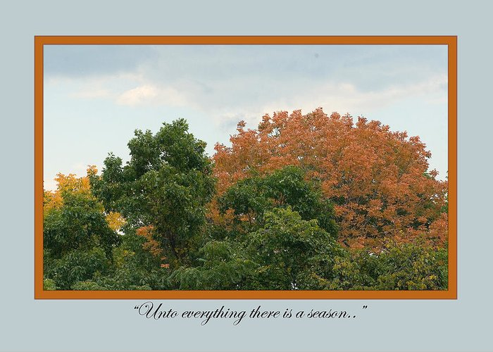 Greeting Card featuring the photograph Sym02 by Helen Ellis